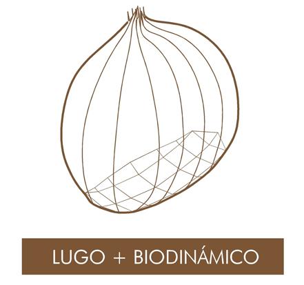 Networking with LIFE Lugo + Biodinámico